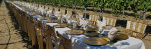 Outdoor wedding reception catered by Happy Day Catering